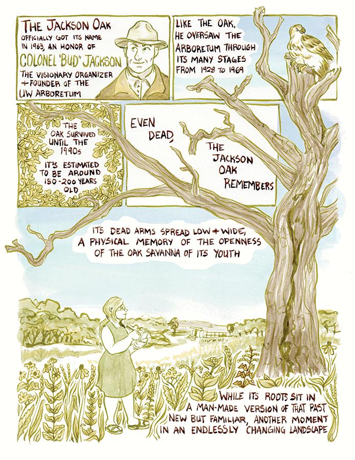 arboretum-layout14