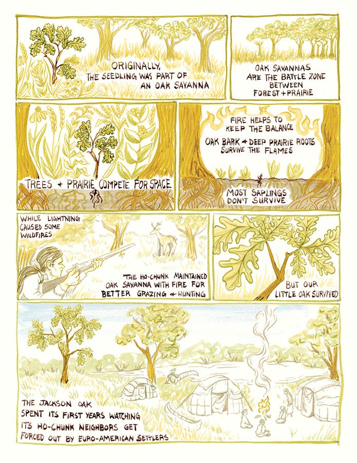 arboretum-layout4