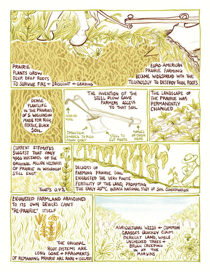 arboretum-layout6